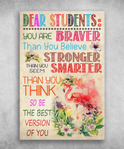Dear Students You Are Braver Flamingos