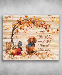 It's The Most Wonderful Time Of The Year Dachshund