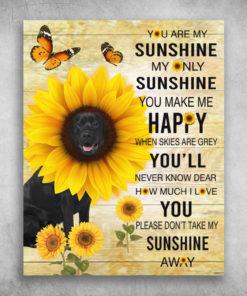You're My Sunshine Please Don't Take My Sunshine Away Companion Dog