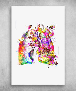 Colorful Flower Anatomy Human Lungs