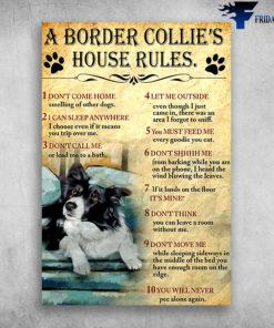 A Border Collie's House Rules I Can Sleep Anywhere