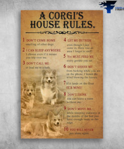 A Corgi's House Rules You Must Feed Me Every Goodie You Eat