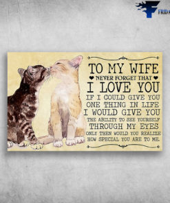 To My Wife Never Forget That I Love You How Special You Are To Me Couple Cats