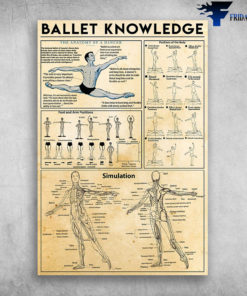 Ballet Knowledge Positions Of The Body The Anatomy Of A Dancer
