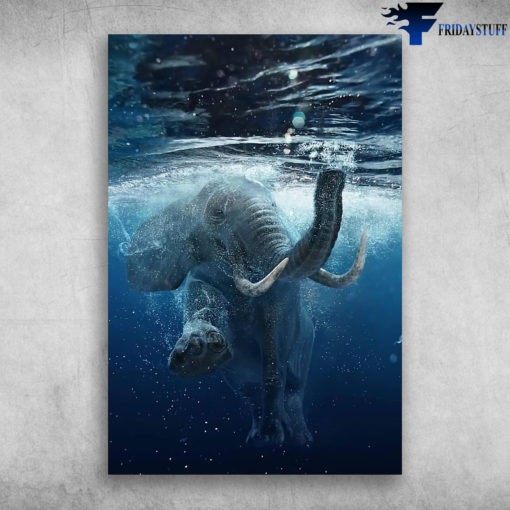 A Diving Elephant Save The Elephant Save The Animals