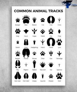 Common Animal Tracks Cute Paw Badger Bear Beaver Cat Cow Crow
