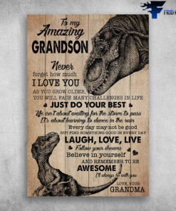 Baby And Grandma Dinosaur To My Amazing Grandson Never Forget How Much I Love You