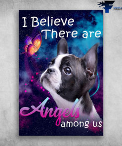 Boston Terrier Dog I Believe There Are Angels Among Us