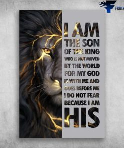 I Am The Son Of The King Who Is Not Moved By The World For My God - Lion
