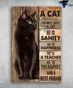 A Cat Is Not Just A Cat He is Sanity And Best Friend