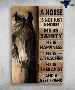 A Horse Is Not Just A Horse He Is Sanity And A Best Friend