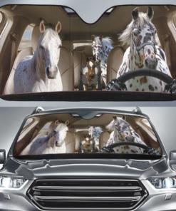 APPALOOSA HORSE Family