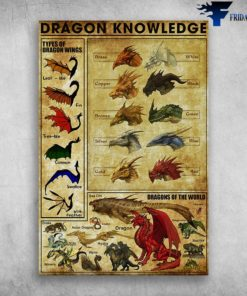 Dragon Knowledge - Types Of Dragon Wings