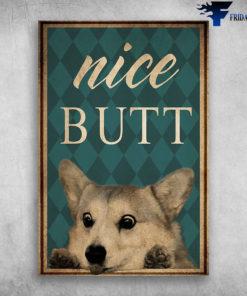 Corgi Dog Cute Nice Butt