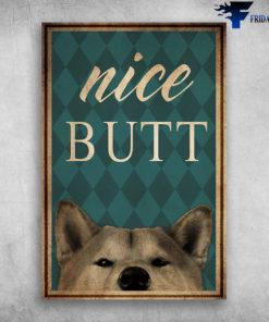 Dog Shiba Inu Nice Butt
