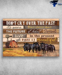 Black Cow On The Farm - Don't Cry Over The Part