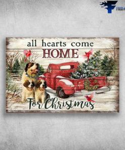 St. Bernard Dog At Christmas - All Hearts Come Home For Christmas
