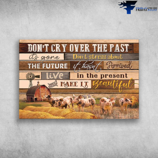 The Pigs On Farm - Don't Cry Over The Past It's Gone, Don't Stress About The Future It Hasn't Arrived Live In The Present