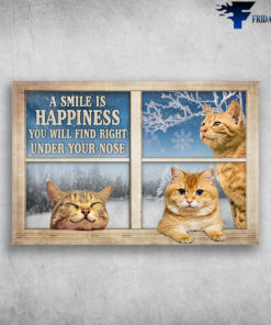 Colorpoint Shorthair Cat - A Smile Is Happiness You Will Find Right Under Your Nose