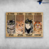 Domestic Short Haired Cat - Be Strong When You Are Weak, Be Brave When You Are Scared