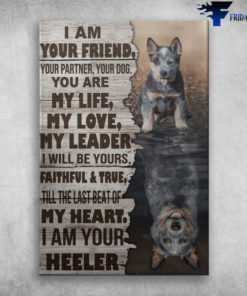Blue Heeler - I Am Your Friend, Your Partner, Your Dog, You Are My Life, My Love, My Leader, I Will Be Yours Faithful And True, Till The Last Beat Of My Heart, I Am Your Heeler