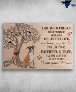 Boxer Dog - I Am Your Friend, Your Partner, Your Dog, You Are My Life, My Love, My Leader, I Will Be Yours, Faithful And True, Till The Lasr Beat Of My Heart, I Am Your Boxer