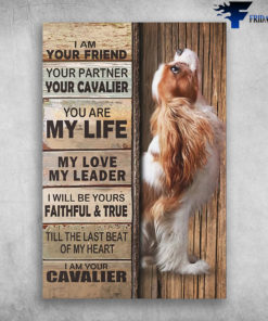 Cavalier King Charles - I Am Your Friend, Your Partner, Your Cavalier. You Are My Life, My Love, My Leader, I Will Be Yours Faithful And True, Till The Last Beat Of My Heart, I Am Your Cavalier