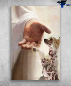 God Hand With Chinese Crested
