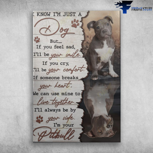 Pitbull Dog - I Know I'm Just A Dog, But If You Feel Sad, I'll Be Your Smile, If You Cry, I'll Be Your Comfort, If Someone Breaks Your Heart, We Can Use Mine To Live Together, I'll Always Be By Your Side, I'm Your Pitbull