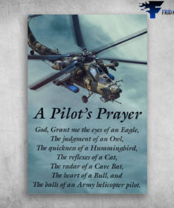 A Pilot's Prayer - God, Grant Me The Eyes Of An Eagle, The Judgment Of An Owl, The Quickness Of A Hummingbird, The Reflexes Of A Cat, The Heart Of A Bull, And The Balls Of An Army Helicopter Pilot