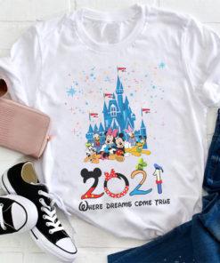2021 where dreams come true - Disney mouse movie, Donald duck