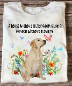 A house without a labrador is like a garden without flowers