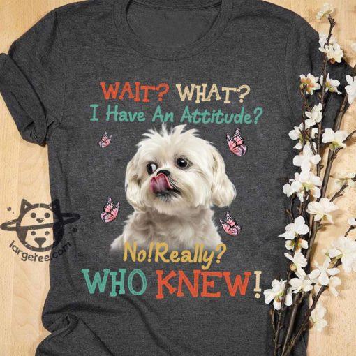 I have an attitude - Shih Tzu dog