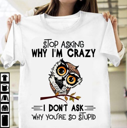 Stop asking why I'm crazy I don't ask why you're stupid - Grumpy owl